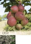 Spezial-Katalog Obst